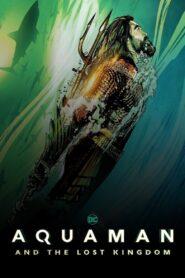 Aquaman : Ostatnie królestwo